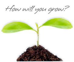 how will u grow